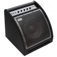 Soundking DS 50